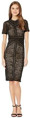 Bardot Elsie Lace Dress (Black) Women's Clothing