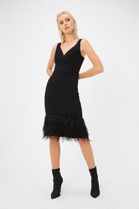 Coast Black Feather Hem Dress