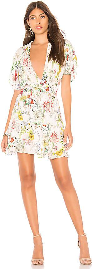 Parker Natalie Dress
