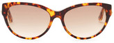Diesel Women's Cat Eye Acetate Frame Sunglasses