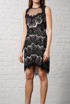 Greylin Lace Dress