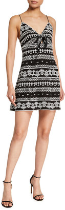 Alice + Olivia Roe Embroidered Tie-Front Flare Dress