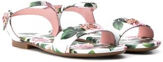 Dolce & Gabbana Kids TEEN Tropical Rose sandals