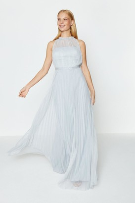 Coast Mesh Pleat Maxi Dress