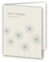 Minted Roman Candles Thank You Cards