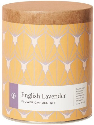 Modern Sprout Waxed Planter English Lavender Indoor Garden Kit