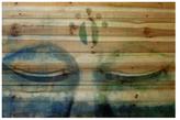 Parvez Taj Meditation by Wood)