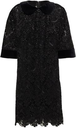 Dolce & Gabbana Velvet-trimmed Guipure Lace Mini Dress