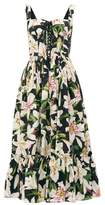 Dolce & Gabbana Lily-print Bustier Cotton Dress - Womens - Black Print