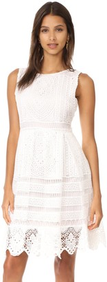 Cupcakes And Cashmere Women's Summers Lace Fit N Flare Dress