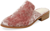 Seychelles Women's Surprised Low Heel Mule