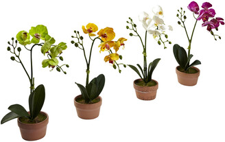 Nearly Natural Set Of 4 Phalaenopsis Orchid With Clay Vase