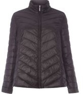 Dorothy Perkins Womens DP Curve Plus Size Black Padded Jacket- Black