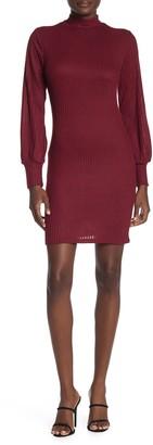 Max & Ash Ribbed Knit Turtleneck Mini Dress