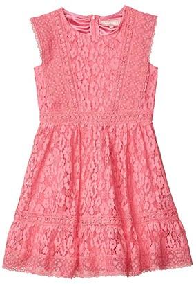 BCBG Girls Scallop Hem Lace Dress (Big Kids) (Hot Pink) Girl's Clothing