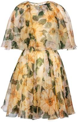 Dolce & Gabbana Floral silk organza minidress