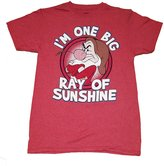 Disney Grumpy Sunshine Unisex Adult Fashion Top T Shirt- M