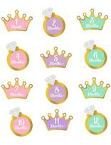 Motherhood Maternity Pearhead Little Princess Foil Stickers