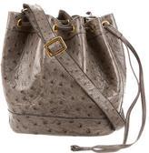 Hermes Ostrich Market Bag