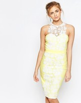 Paper Dolls Sweetheart Pencil Dress With Premium Lace Panel