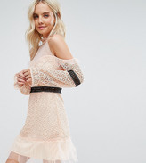 True Decadence Petite Cold Shoulder All Over Lace Mini Dress With Contrast Waistband And Mesh Hem