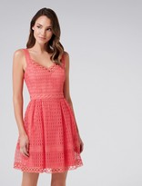 Forever New Alice Geometric Lace Prom Dress - Coral Reef - 4