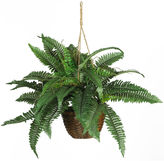 Asstd National Brand Nearly Natural Boston Fern Silk Hanging Basket