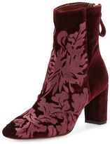 Alexandre Birman Regina Embroidered Velvet Boot