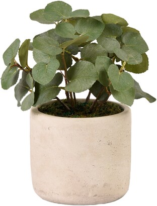 Bloomr Eucalyptus Planter Decoration