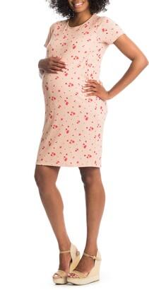 Everly Grey Aluisa Maternity/Nursing Dress