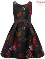 Monsoon Selina Bird Jacquard Dress