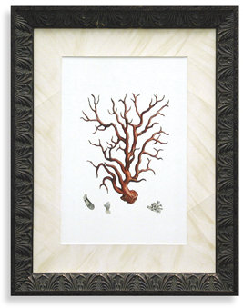 Bed Bath & Beyond Red Coral I Wall Art