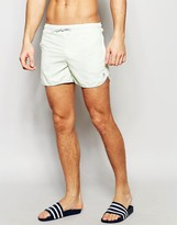 Supremacy Runner Swim Shorts