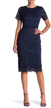 Alexia Admor Delora Short Sleeve Lace Sheath Dress