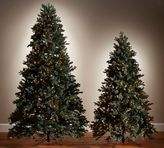 Pottery Barn Lit Faux Blue Spruce Trees