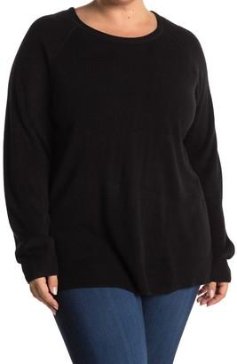 Sweet Romeo Modern Girl Ribbed Raglan Sleeve Sweater (Plus Size)