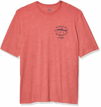 Izod Men's Big & Tall Big Short Sleeve Graphic T-Shirt
