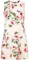 Dolce & Gabbana rose print shift dress
