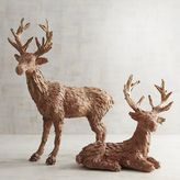 Pier 1 Imports Natural Deer with Golden Antlers