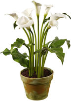 Winward Silks 30 Calla Lily in Planter, White