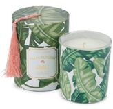 Twos Company Two's Company Palm Passion Coconut Lime Candle