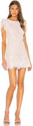 BB Dakota Fast Lace Environment Dress