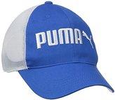 Puma Men's Interference Stretch Mesh Baseball Cap