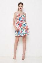 Alannah Hill NEW Women's - Undeniable Beauty Dress