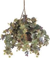 Asstd National Brand Nearly Natural Grape Leaf Hanging Basket Silk Plant