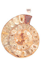 Charles Albert Huge Ammonite Fossil Sterling Silver Pendant $400