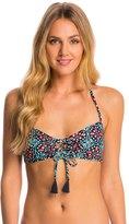 Michael Kors Swimwear Nui Halter Bralette Bikini Top 8142787