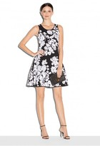 Milly Silhouetted Floral Dress