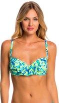 CoCo Reef Amazon Aura Ruffle Bikini Top (C/D/DD Cup) 8146262