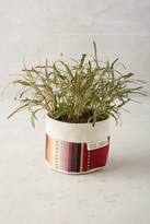 Good Company Wares Sedona Planter